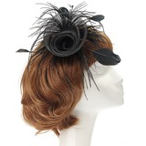 Het oog Springende Netto garen/Feather Fascinators (042057222)