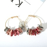 Nice Alloy Ladies' Earrings (011177827)