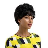 Loose Wavy Человеческая прическа Человеческие волосы Парики (219179044)