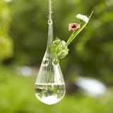 Simpel Opknoping Glas Vaas (128039215)