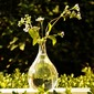 Довольно стекло ваза (128035741)
